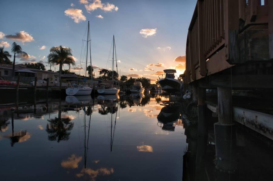 Florida Mornings